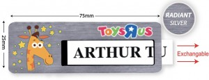 Silver Reusable Name Tag - Model 8-11